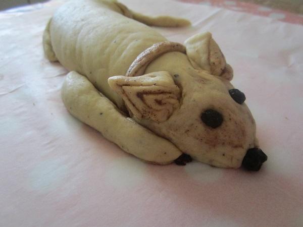 Cinnamon Dogie