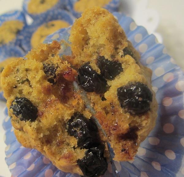 Sugar Free Blueberry Muffin